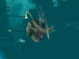 Creatures of the BioShock series