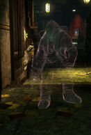 Ghosts decoy