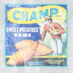 Bio Unused Champ Brand Poster.png
