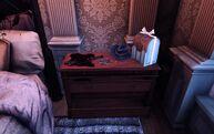 BioI Hotel Soldiers Field Bedroom Preston's Drawer