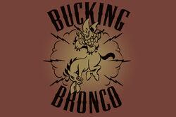 Bucking-bronco-ad-2.jpg