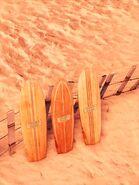 BioI Battleship Bay Columbia Boards Surfboards