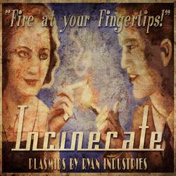 Plasmid Incinerate Poster.jpg