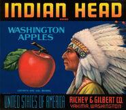 Indian Head Washington Apples ad