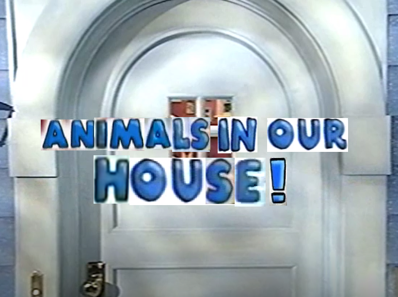Animals In Our House!