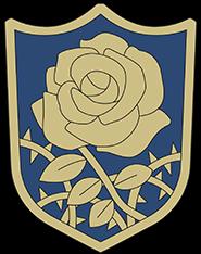 Błękitne Róże