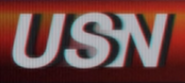 USN Logo Large