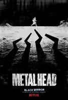 Metallkopf