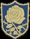 Rosa Azul.png