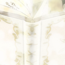 Charmy's grimoire.png