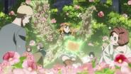 Paraíso de Cura Floral da Princesa