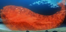 Magie Bestiale Baleine non-nommée