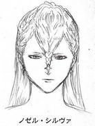 Nozel initial concept head