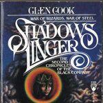 Shadows Linger.jpg