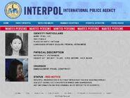 Luli Interpol