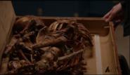 Real Raymond Reddington Bones