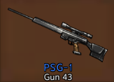PSG-1.png