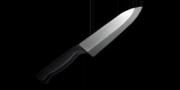 Kitchen Knife.png