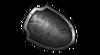 Steel Shield.png