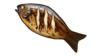 Baked Carp.png