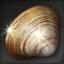 Icon for Pristine Clam.
