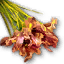 Quest dried iris leaf.png