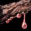 Gather rosewood sap.png