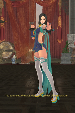 Jin Soul Fighter Female.png
