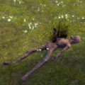 The Trail of Dead.png