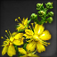 Icon for Yellow Hibiscus.