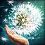 Skill icon summoner seed shroud.png