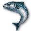 Quest blue fish.png