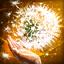Skill icon summoner enhanced seed shroud.png