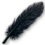 Quest Black large feather.png