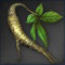 Icon for Wild Ginseng.