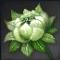 Icon for Jade Magnolia.