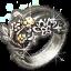 Icon for Awakened Oathbreaker Ring.
