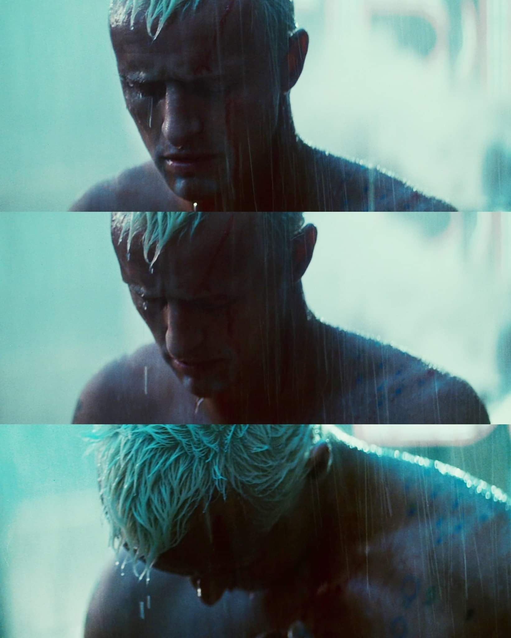 A heartbroken Roy Batty weeps as his life comes to an end.jpg