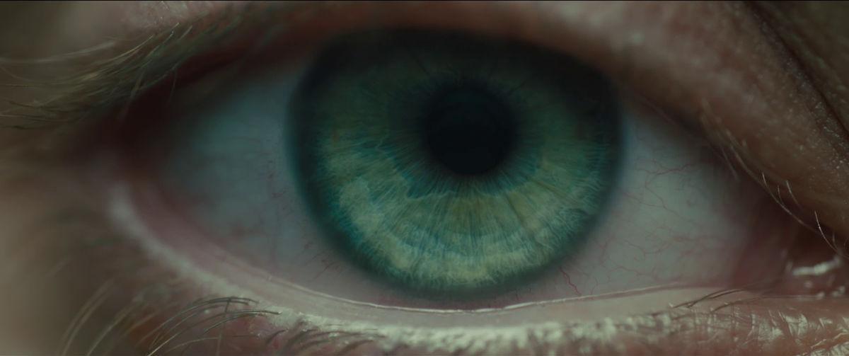 2049 eye.jpg