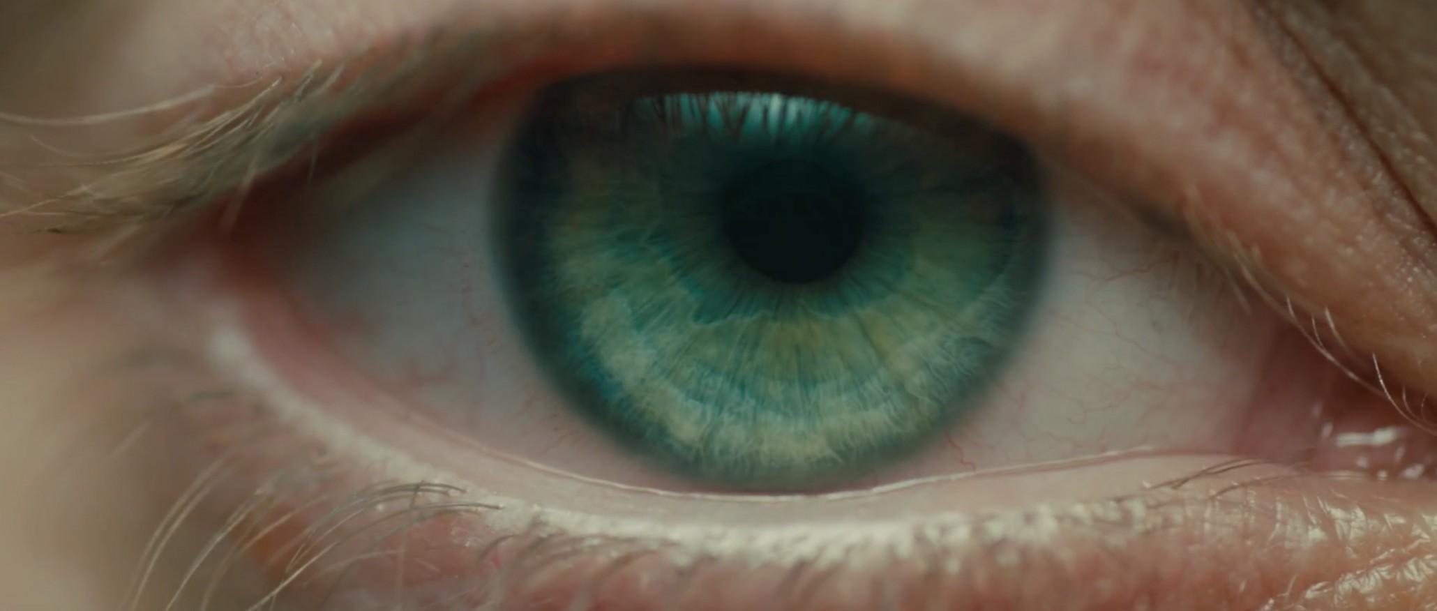 BR2049 eye.jpg