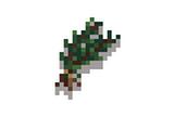 Quest: Healing Herbs