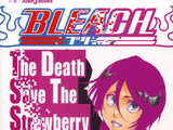 Bleach: The Death Save The Strawberry