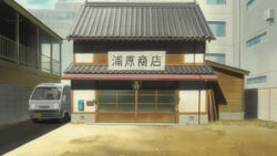 Toko Urahara Infobox.jpg