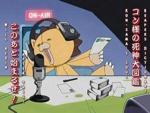 Radio Kon.jpeg
