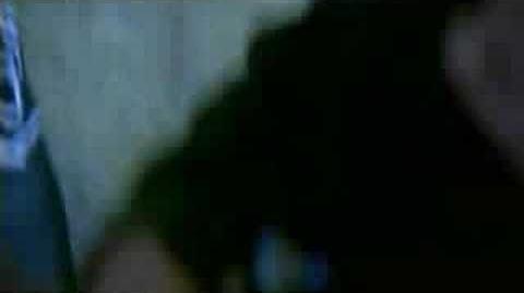 Ivan i Delfin - Jej Czarne Oczy