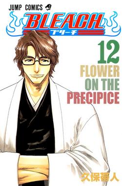 Volume 12.png