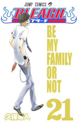 Bleach cover 21.png