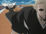 Hitsugaya persiguiendo a Kira