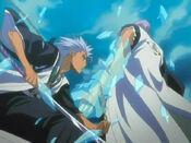Hitsugaya atrapa a Ichimaru