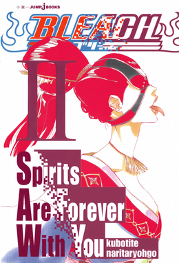 Bleach Spirits Are Forever With You II.png